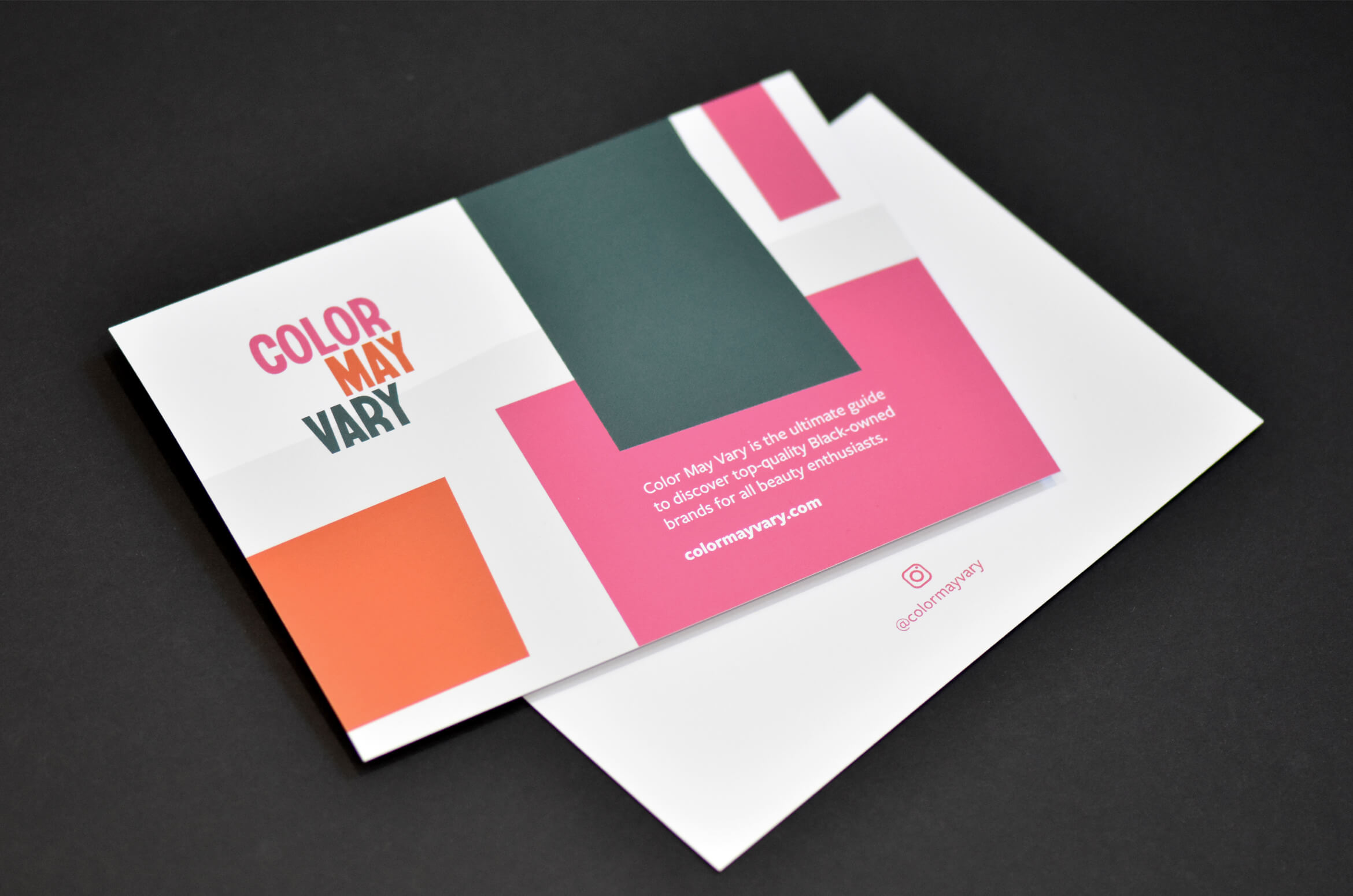 Color May Vary Flyer