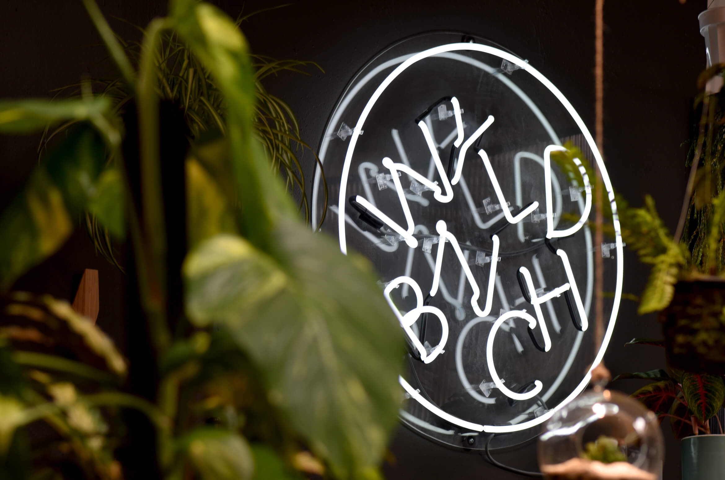 Neon signage at Wyldbnch pants in Los Angeles.